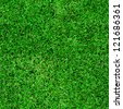 Seamless green grass background - stock photo