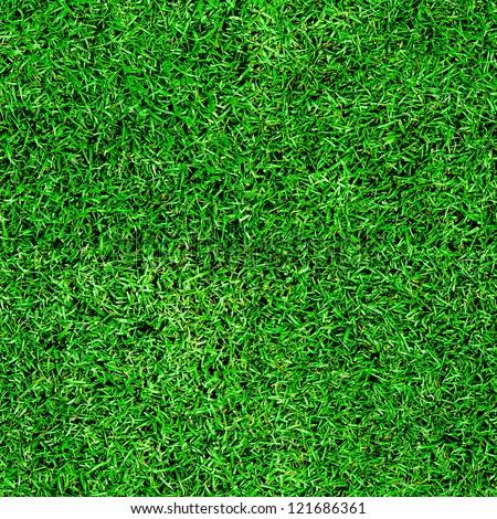 Seamless green grass background - stock photo