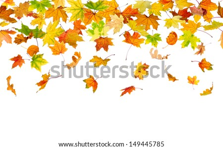 Seamless pattern of autumn leaves, falling down. - stock photo