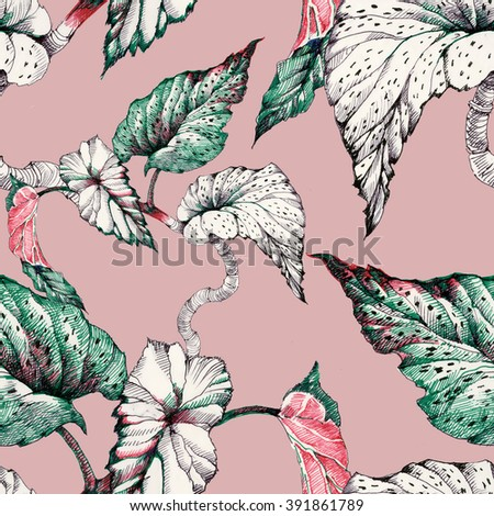 Seamless pattern on pink background with garden coleus plant