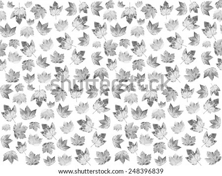 seamless pattern with maple leaves in black and white. Mourning background - stock photo