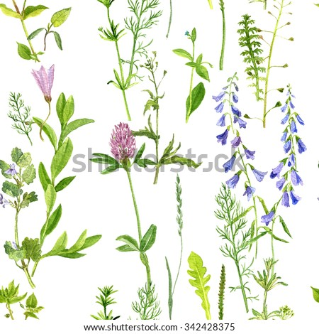 seamless pattern with watercolor drawing wild flowers, herbs and leaves, painted  wild plants, botanical illustration in vintage style, color drawing floral seamless background - stock photo