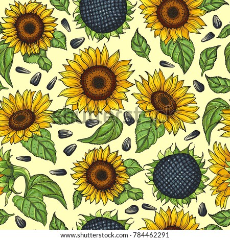 Seamless Pattern With Yellow Sunflowers Illustration Sunflower Background Blossom Bright
