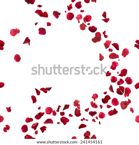 seamless, red rose petals breeze, studio photographed in depth of field, isolated on white - stock photo