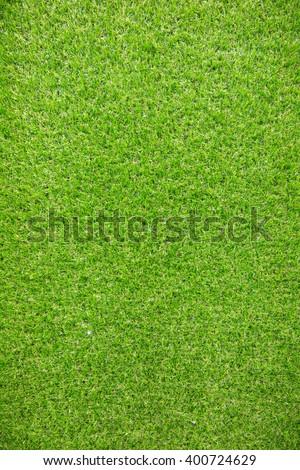 Seamless texture of Green grass.World Environment Day - stock photo