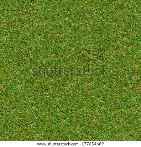 Seamless Tileable Texture of Green Meadow Grass. - stock photo