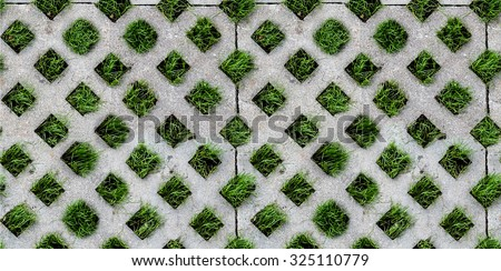 seamless tiled texture of Green grass between the sidewalk square tiles. The Cement brick between green grass background. grass and cement pavement. Rock footpath in the middle of a lawn field. - stock photo
