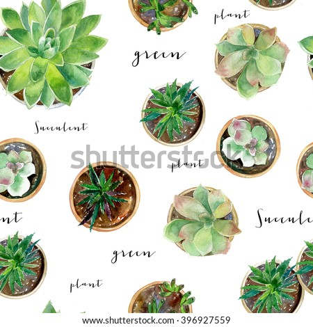 Seamless watercolor illustration with succulent. Background texture can be used for wallpaper, textile, wrapping and much more - stock photo