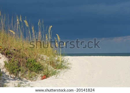 Seaoats framing Gulf of Mexico. Madeira Beach Florida - stock photo