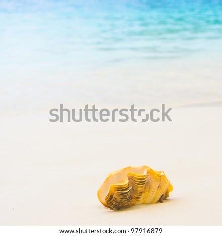 Seascape Divine Paradise Blue - stock photo