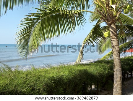 Seascape with palm tree - stock photo