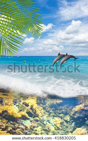 seascape with turquoise sea, underwater fishes  and jumping dolphins - stock photo