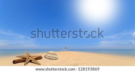 Seashell and starfish on desert island travel concept - stock photo
