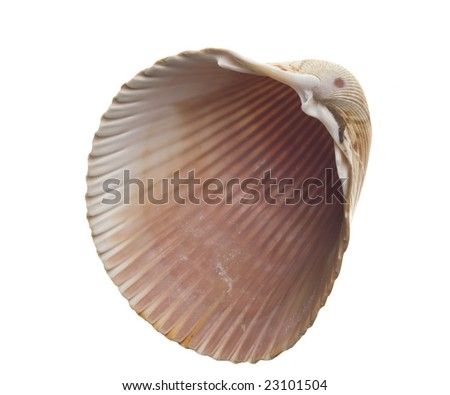 black single men in bivalve How do we get to solve the problem of the single black female so many black men lack employment skills and are likely to be welcome to hurt2healing magazine.