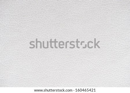 Seashell leather background  texture - stock photo