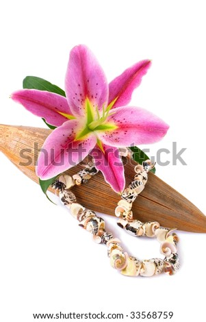 Seashell necklace and lily flower set with a dried coco leaf, isolated over white - stock photo
