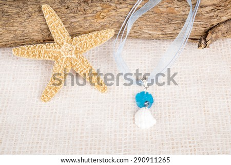 Seashell Necklace Displayed Over a Tree Branch - stock photo