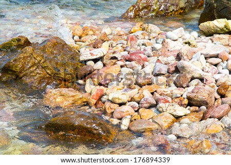 Seashell on sand and pebble beach by the sea - stock photo