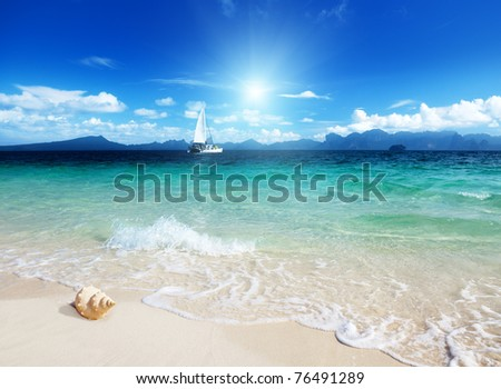 seashell on the beach of Poda island Thailand - stock photo