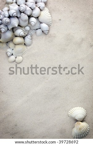 Seashell stationary background in soft off white colors - stock photo