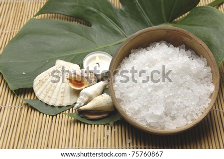 seashell with candle and bowl of salt with green leaf - stock photo