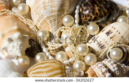 seashell with pearls on the white background - stock photo