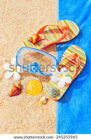 Seashells and diving mask on the sand - stock photo