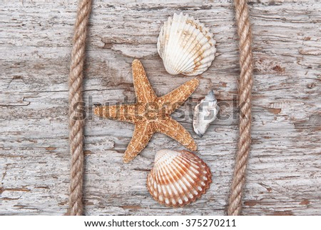 Seashells and rope on the old shabby chic weathered wood - stock photo
