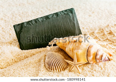 Seashells, fishing net and a starfish with a blank black sign with copyspace for your text lying on the golden textured sand of a tropical beach in a sunny summer marine background - stock photo