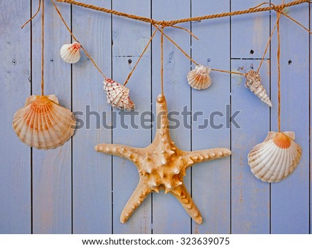 Seashells hanging on the rope, vintage styling and instagram toning