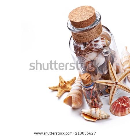 Seashells isolated on white background - stock photo