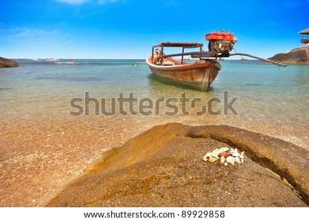 Seashells on a rock and a boat in a bay