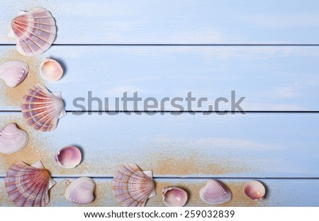 Seashells on Blue Wooden Plank Background - stock photo
