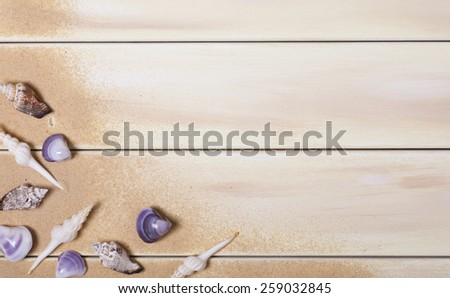 Seashells on Brown Wooden Plank Background - stock photo