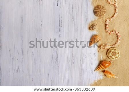 Seashells on light background - stock photo
