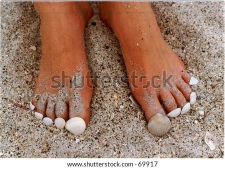 Seashells on toes - stock photo