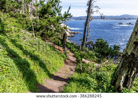 Seaside trail / path  with Cypress trees & blue sea at Point Lobos State Natural Reserve is ideal for hiking, walking & running along the rugged Big Sur coastline, on the California Central Coast. - stock photo