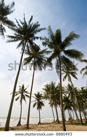 seaside view - stock photo