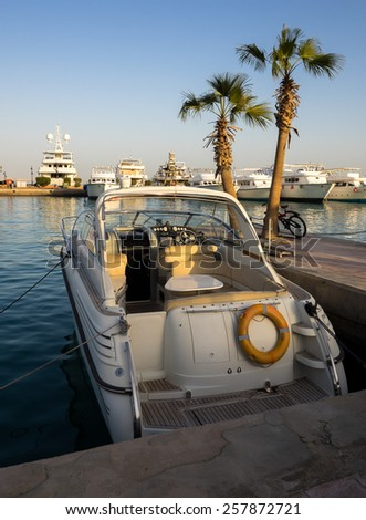 Seaside with motorboat and palms at pier. Beautiful yacht and boats are moored in the sea port. Water transport for luxury lifestyle in summertime and sea vacation. - stock photo