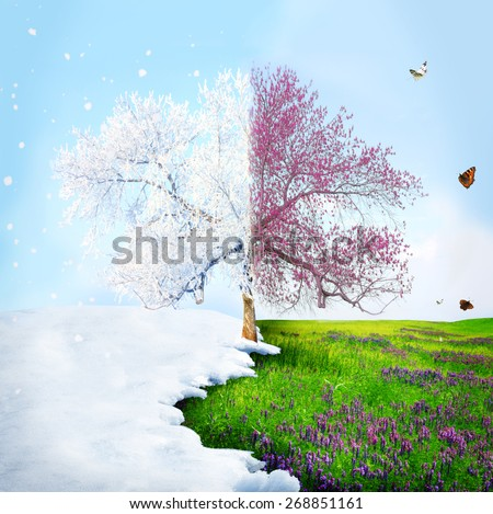 Season change from winter to spring - stock photo