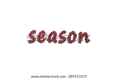 season text flower with white background concept of typography - stock photo