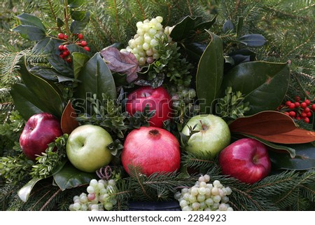 seasonal display of evergreens, apples, grapes, holly, berries, and a pomegranate - stock photo