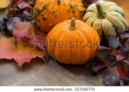 seasonal pumpkin with autumn leaves on table, top view - stock photo