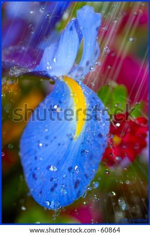 Seattle Rain - stock photo