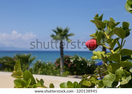 Seaview from the terrace of a luxury hotel in Greece - stock photo