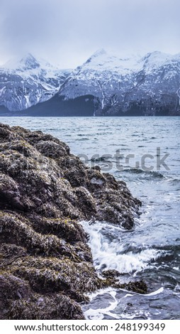 Seaweed covered rocks by the sea in Southeast Alaska on a stormy day. - stock photo