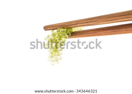 Seaweed ,Healthy Food , Oval sea grapes seaweed isolated - stock photo