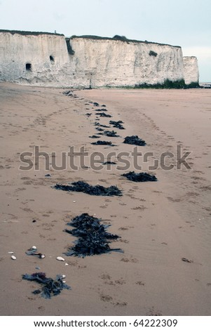 Seaweed Road to Caves - stock photo