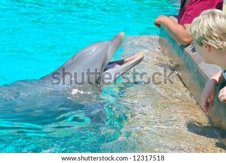 SeaWorld San Diego is a theme park located in San Diego, California. The park is owned by Busch Entertainment Corporation, a division of Anheuser-Busch. - stock photo