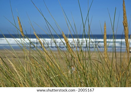 secluded beach - stock photo